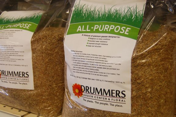 all purpose grass seed