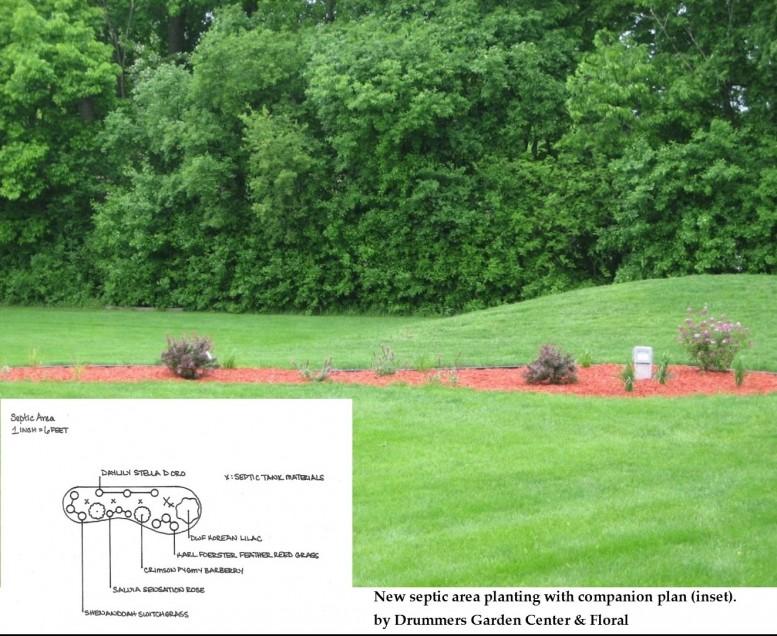 Mankato Landscaping Design Services  Onsite Landscape Consultations