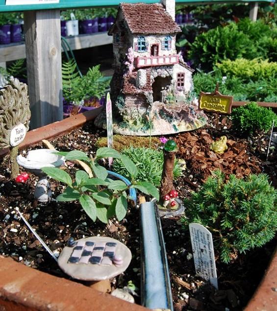 mini garden with house