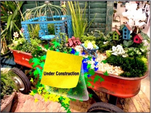 Miniature Garden Construction August 18