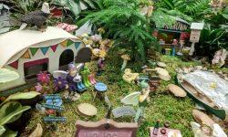 fairy garden, mini-garden