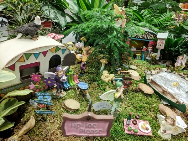 Create A Mini Garden Or Terrarium