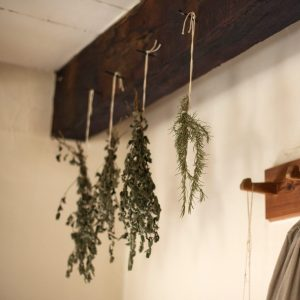 drying herbs by loose bundles