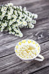 camomile tea and flowers