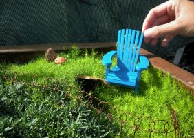 miniature garden making