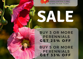 Perennial Sale for August