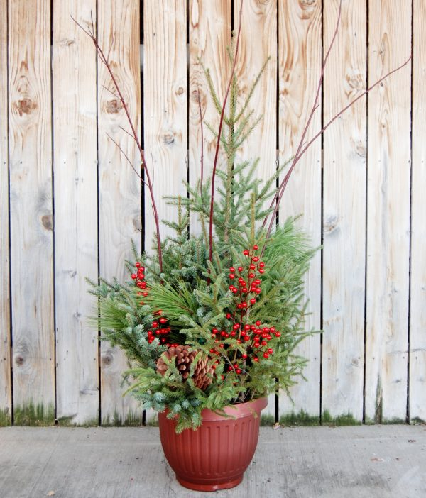Spruce Top Pot with holiday decorations