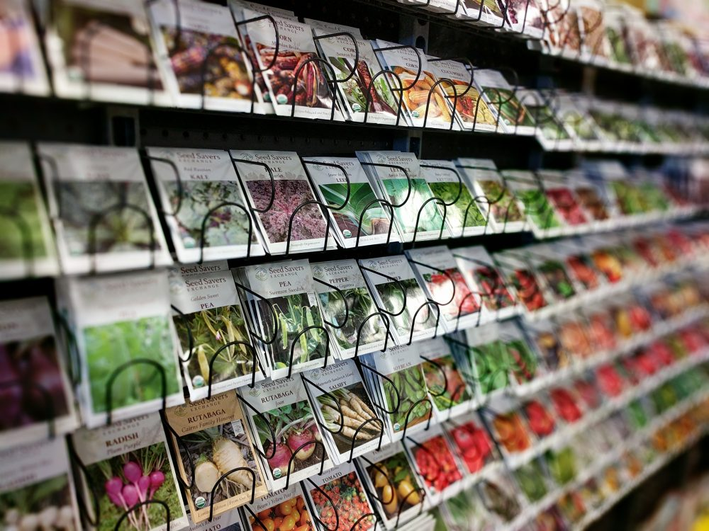 growing seeds on store shelf