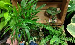 tiny treasures mini garden