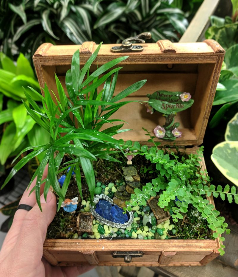 tiny treasures mini garden with terrarium plants and mini garden figurines