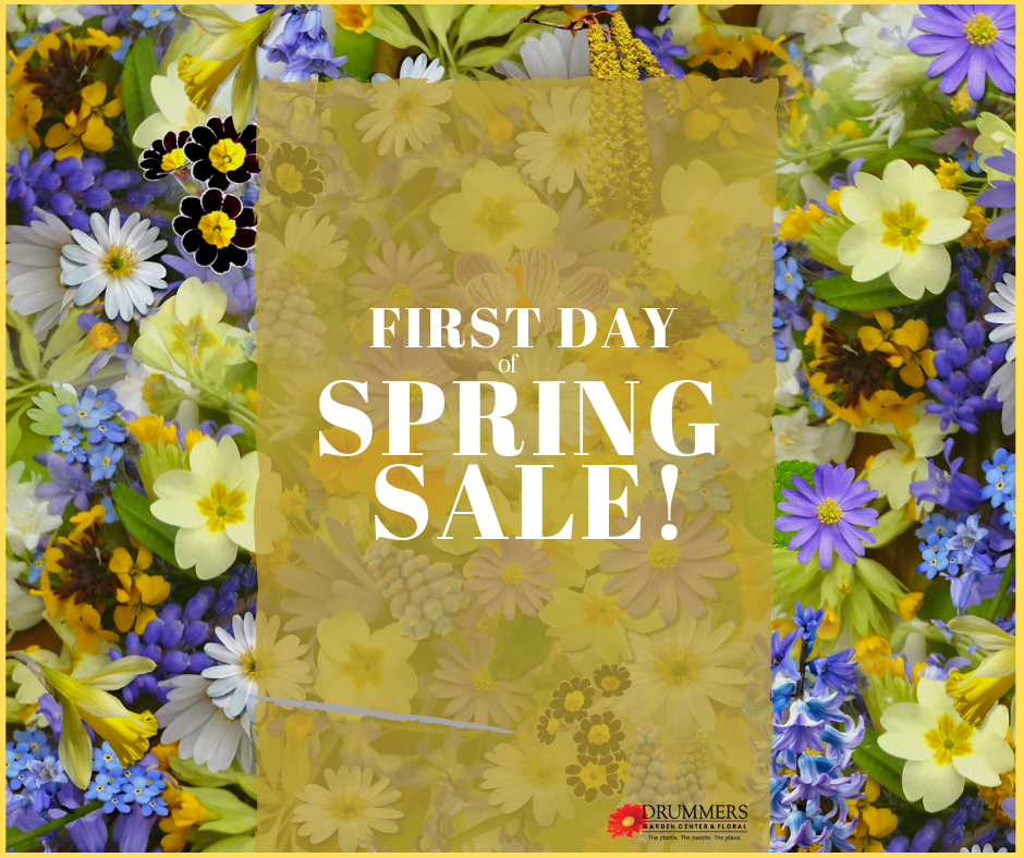 first day of spring sale 2019