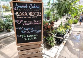 annual sales chalkboard sign hanging in the greenhouse
