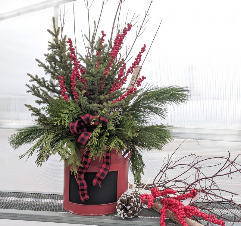 modern christmas spruce top container