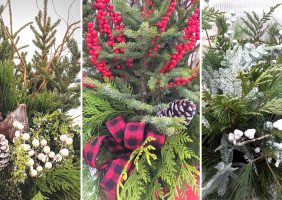 three different spruce top design styles