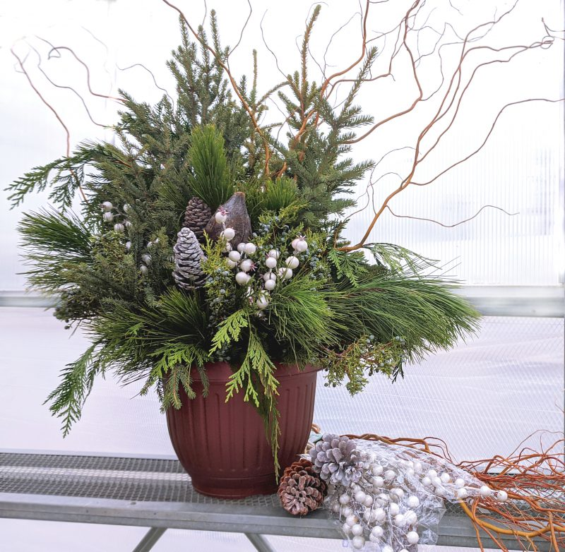woodsy winter neutrals spruce top pot