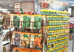 hundreds of lake valley seed packets on display