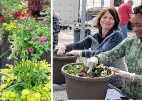 Ladies planting their spring containers in drummmers greenhouse and containers growing filled with flowers