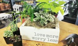 """wood planter box with """"love more worry less"""" and houseplants planted inside"""