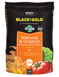 black gold natural and organic