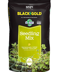 Black Gold seedling mix