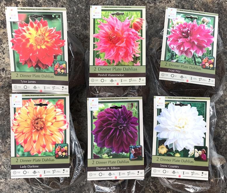 Seasonal Plants Gardeners Supply Seeds House Plants