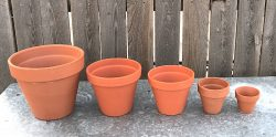 terra cotta pottery in various size