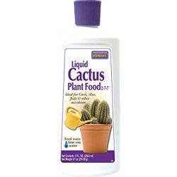 bonide liquid cactus plant food 8 oz bottle