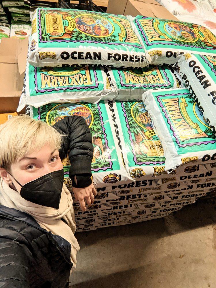 ocean forest soil
