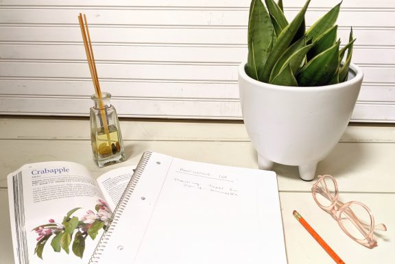 sanseveria on a desk with book, paper, and glasses